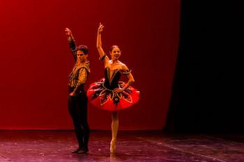 Ballet Nacional de Praga en 27º Festival Internacional de Ballet de La Habana. Día 30 de Octubre