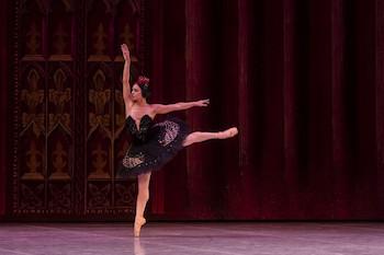 El Lago de los cisnes/ por Ballet Nacional de Cuba. 27º Festival Internacional de Ballet de La Habana. Día 1º de Noviembre